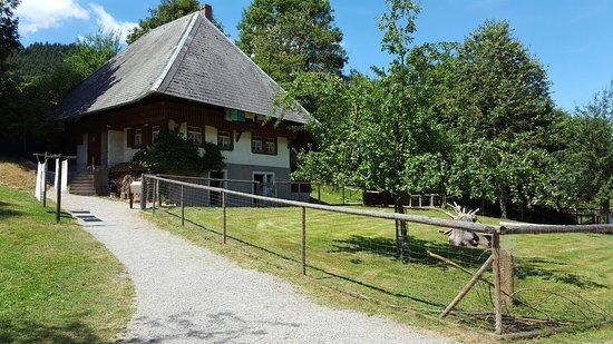 Gutach im Schwarzwald, ألمانيا: 20160726_132747_large.jpg