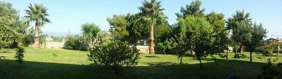 Santa Domenica, Italia: FB_IMG_1469741591278_large.jpg