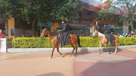 Disney Village: 20160726_180241_large.jpg
