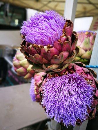 Local carantec produce market