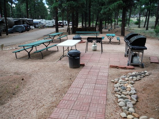 Overgaard, AZ: Barbecue and Picnic area