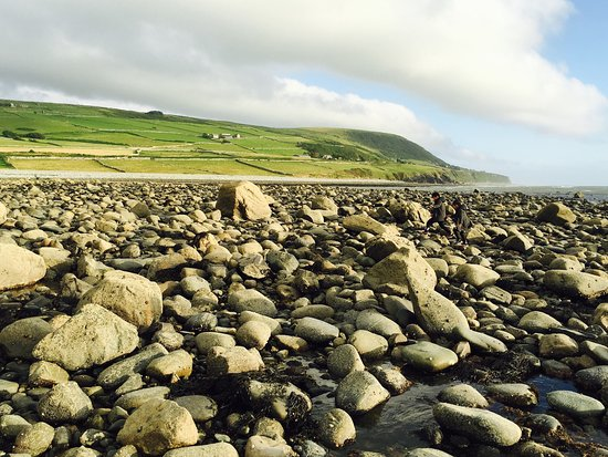 Llwyngwril, UK: Stony beach - absolutely amazing