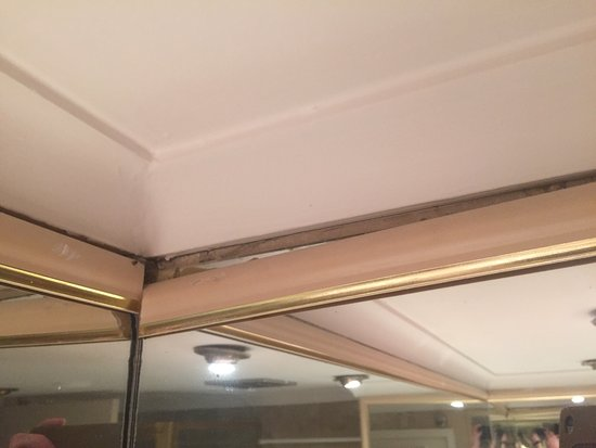 Brighton le Sands, Australia: Well past its use by date. Basic maintenance lacking and nowhere near usual Novotel standard.