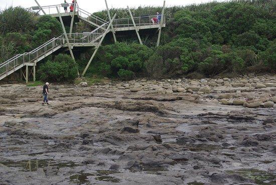 Waikawa, Nouvelle-Zélande : escalier et passerelle
