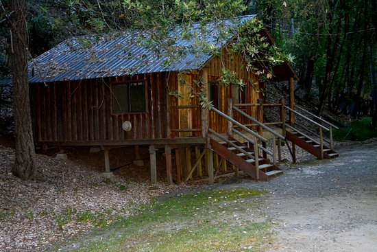 Merlin, OR: The cabin where we spent our first night