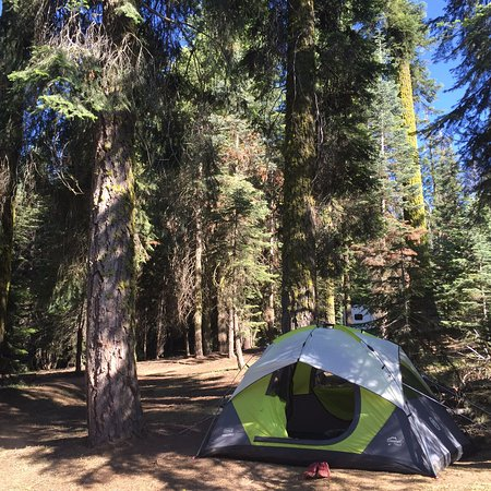 Dorst Campground: Nice flat, shaded area to set up our tent