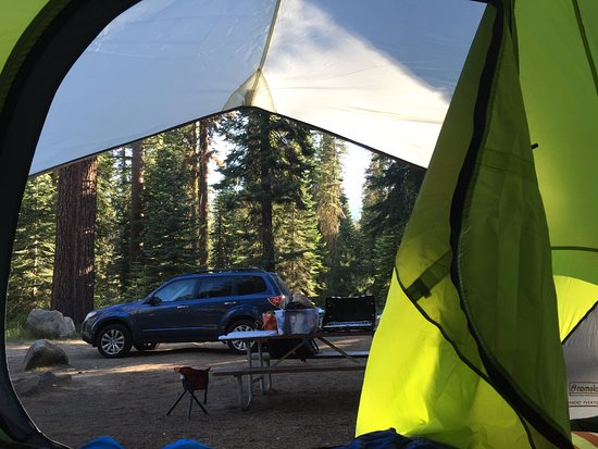 Dorst Campground: Parking spot and picnic table were all conveniently located
