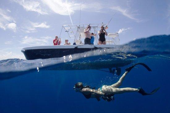 Jupiter, FL: Diving by the boat!