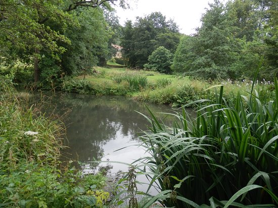 Northallerton, UK: A small pond that fits perfectly in this beautifull garden.