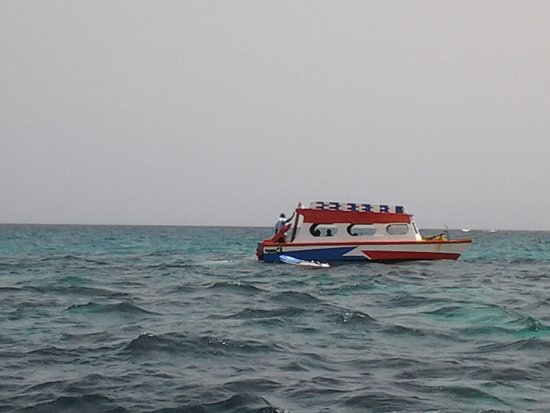 this is one of the glass bottom boats to the nylon pool.