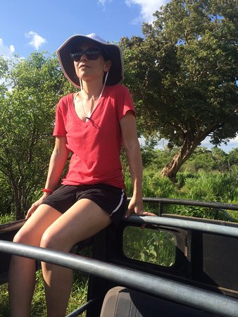 Habarana, Sri Lanka: looking out for elephants!