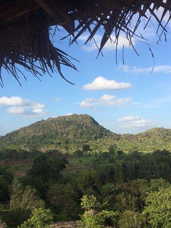 Habarana, Sri Lanka: looking out over the park