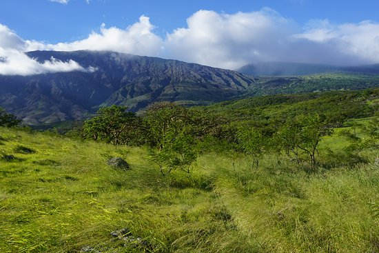 Wailuku, Hawaï : Back Side of Haleakala; so many ecosystems in view at once