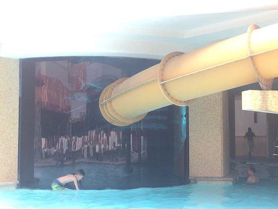 جولدن ناجيت هوتل آند كازينو: Shark tank is a rather sweet pool and the slide through the tank is awesome! I've had better cus