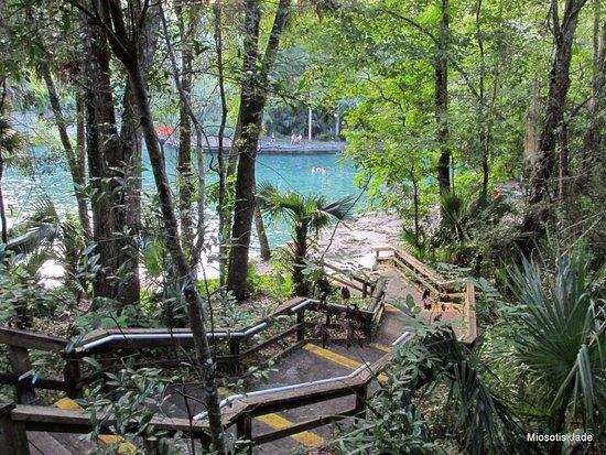 Wekiwa Springs State Park: Wekiva Springs