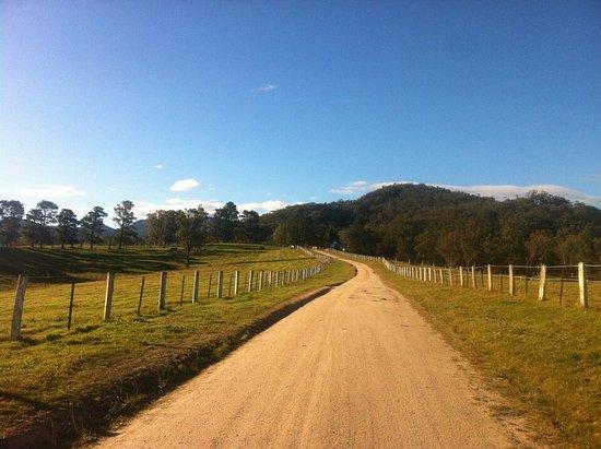 Megalong, ออสเตรเลีย: photo4.jpg