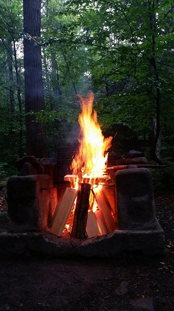 Haines Falls, Nowy Jork: camp site fire pit