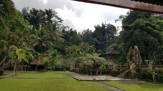 Tegalalang, Indonesië: 20160726_145400_large.jpg