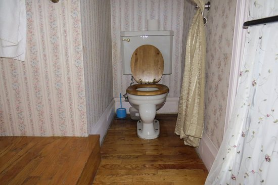 Power's Mansion Inn: No real bathroom - toilet has no privacy door, 5 steps leading to the tub from here
