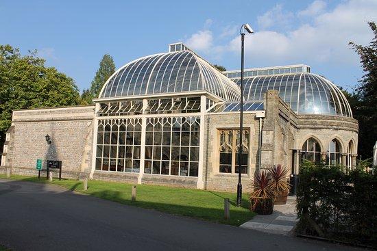 Tortworth, UK: The Orangery