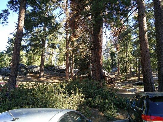 John Muir Lodge: IMG_20160724_084900_large.jpg