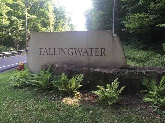 Fallingwater: photo1.jpg
