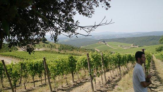 Foto de Montalcino