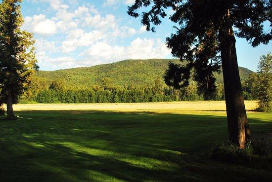 Bilde fra Terrace