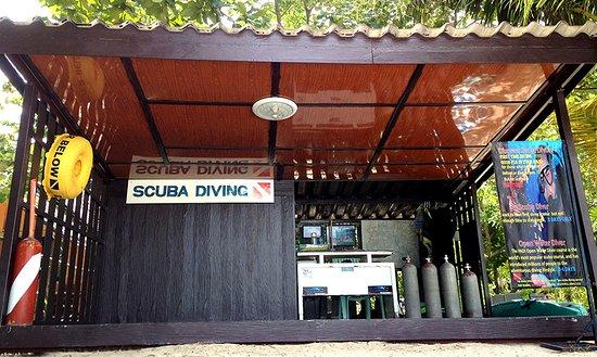 Pro Scuba Diving Service