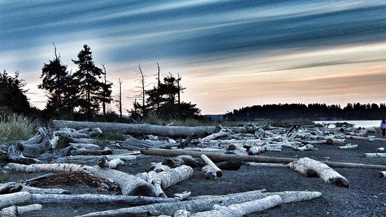 Oceanside RV Resort: photo0.jpg