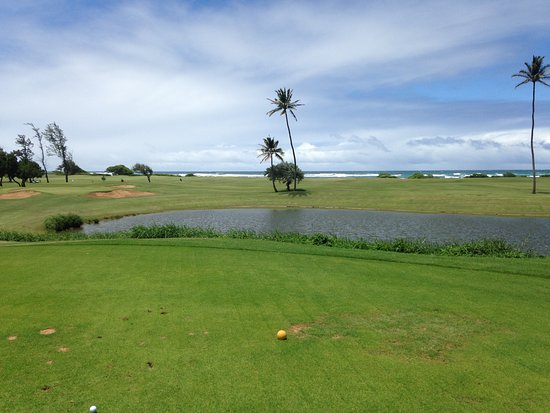 Wailuku, Hawaï : Easy shot on the second. What? Wait? What's that over there...