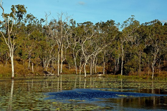Mareeba, Australien: 150 acres of wilderness to camp and explore