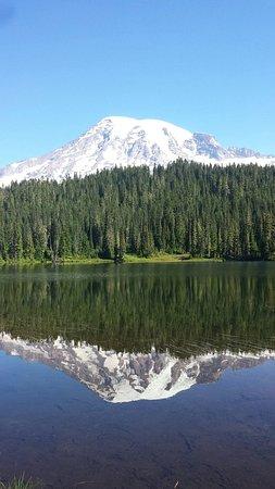 Mount Rainier: 20160728_092951_large.jpg