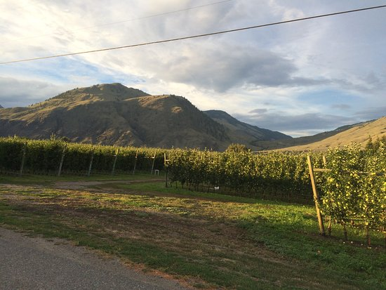 Crowsnest Vineyards