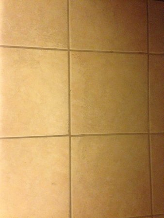 Rancho Cordova, CA: Mold on bathroom ceiling and dirty tile (that's filth, not a shadow)
