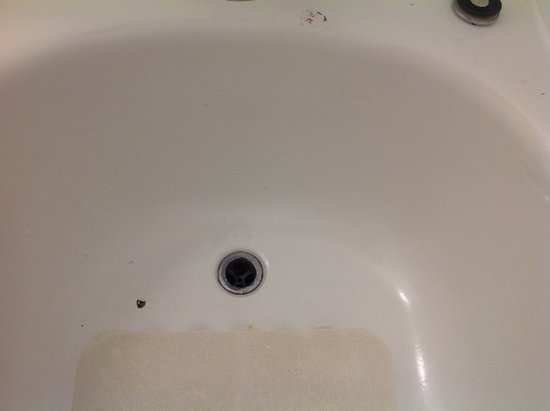 Fremont, CA: Gross tub