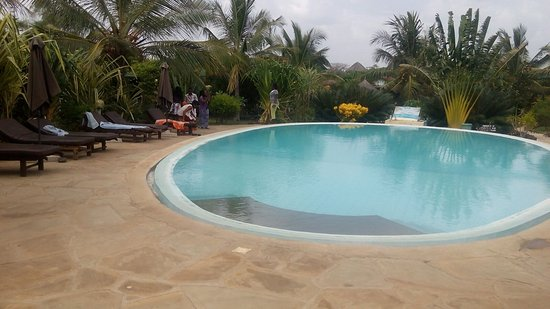 African Dream Cottages : the swimming pool