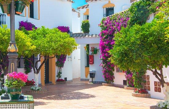 Globales Cortijo Blanco Hotel: Gardens / Jardines
