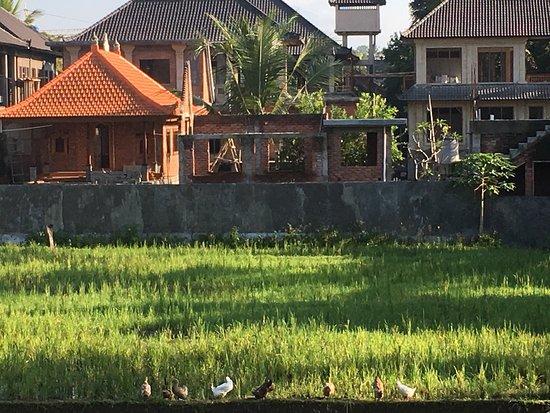 Pondok Permata Homestay: photo1.jpg