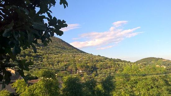 Arqua Petrarca, Italien: La vista dalla terrazza