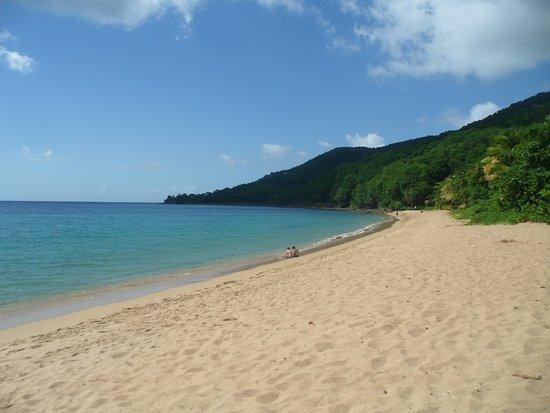 Десе, Гваделупа: plage de grande anse 1