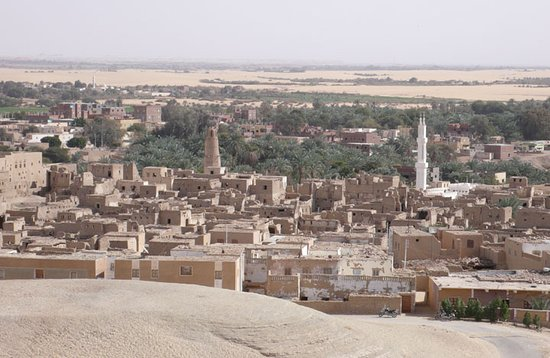 Desert Lodge: Qasr (view from the terrace)