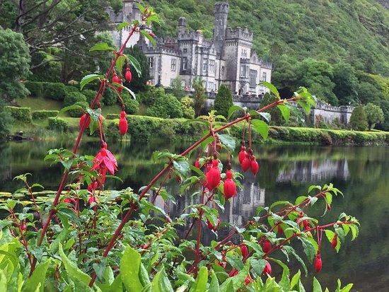 Kylemore, Irlandia: photo7.jpg