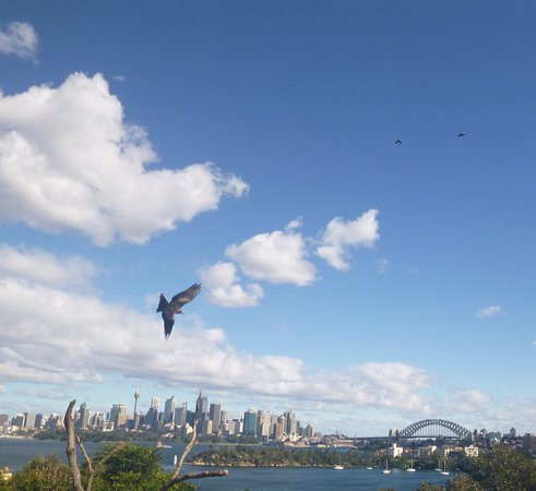 Mosman, أستراليا: photo1.jpg