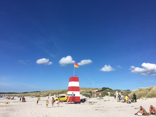 Hoejby, Denmark: Wonderful sandy beach, no stones at all- perfect for families, big Parking lot, lifeguards on du