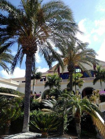 Bahia Principe Costa Adeje: Recomendado al100℅