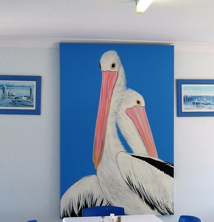 Sussex Inlet, Australia: Pelican Photo at Pelican Shores Cafe & Marina