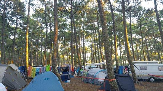 Camping Bremontier