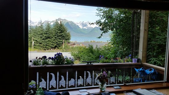 Alaska Paddle Inn: View from the front room