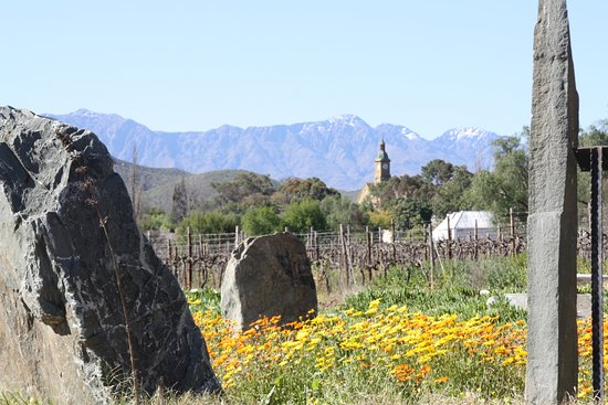 Calitzdorp, Jihoafrická republika: The Ring of Rocks across from the Boplaas tasting room looking over the vineyards towards the to